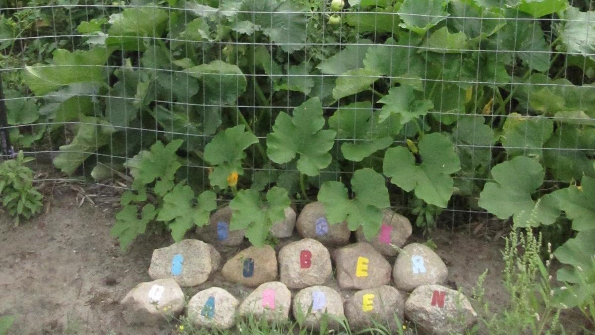 Rock Sober garden IMG_0440.JPG