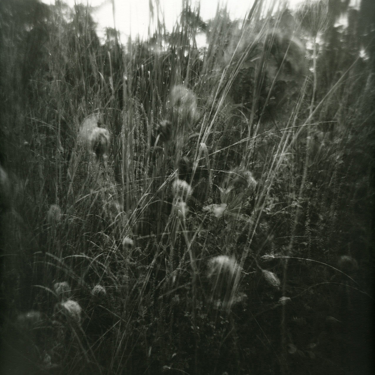 """""""Untitled"""" from the Dream Series by Erica Popp. 2016. Silver gelatin print."""