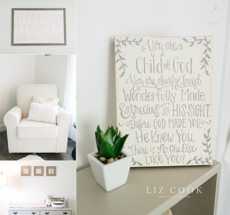 lynchburg-virginia-baby-girl-nursery-pictures-_0001.jpg