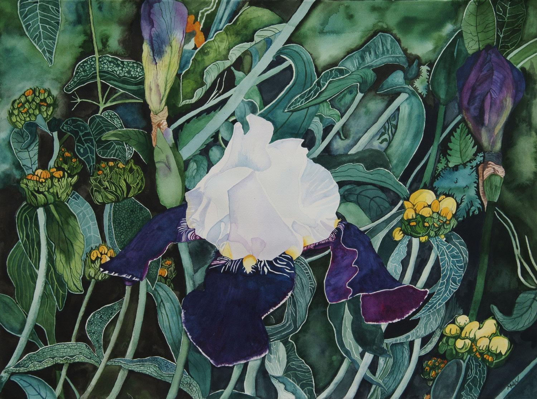 Iris in Wonderland - Sold
