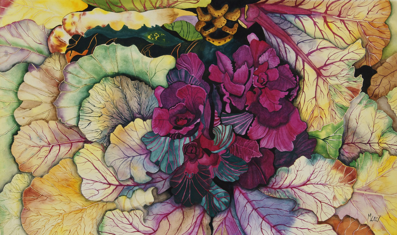 Ornamental Cabbage - Sold