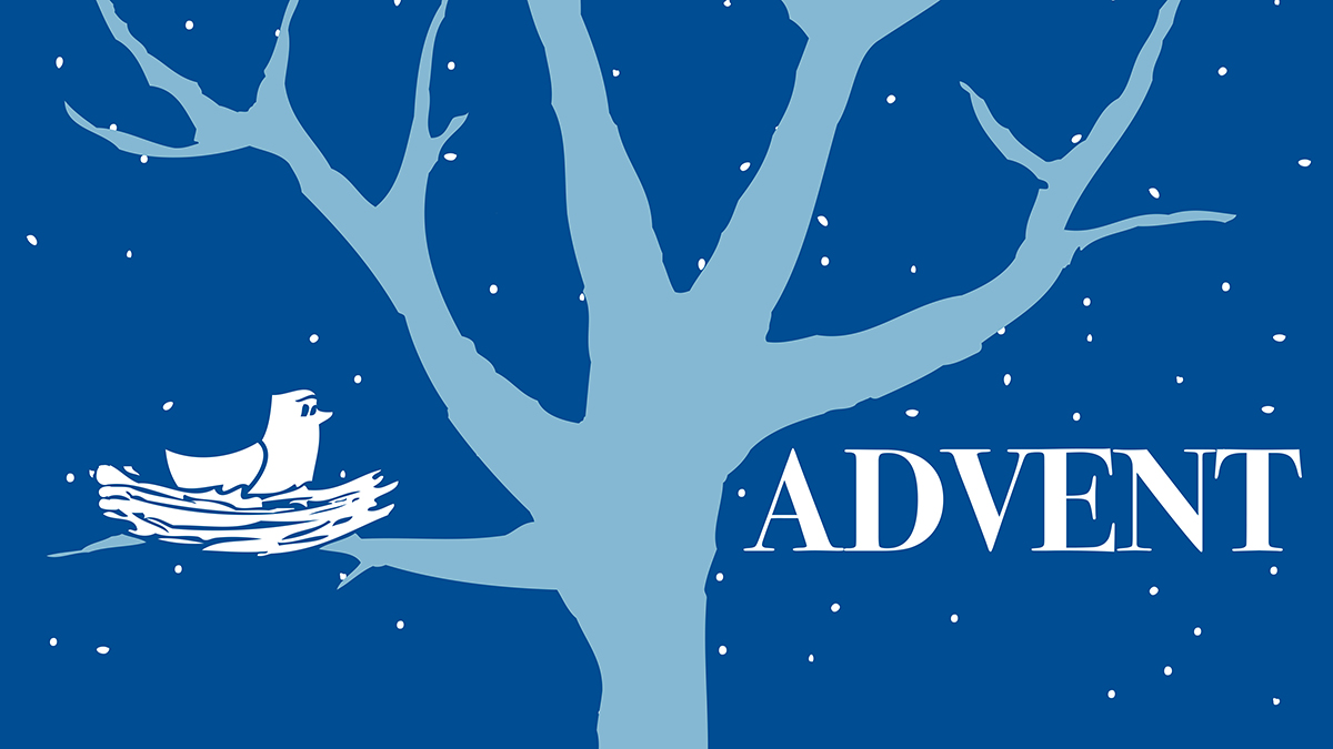 If you missed picking up this year's Advent Guide, you can still join in using a digital version which  you can find here .