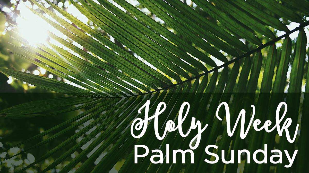 Holy Week Palm Sunday 2019.jpg