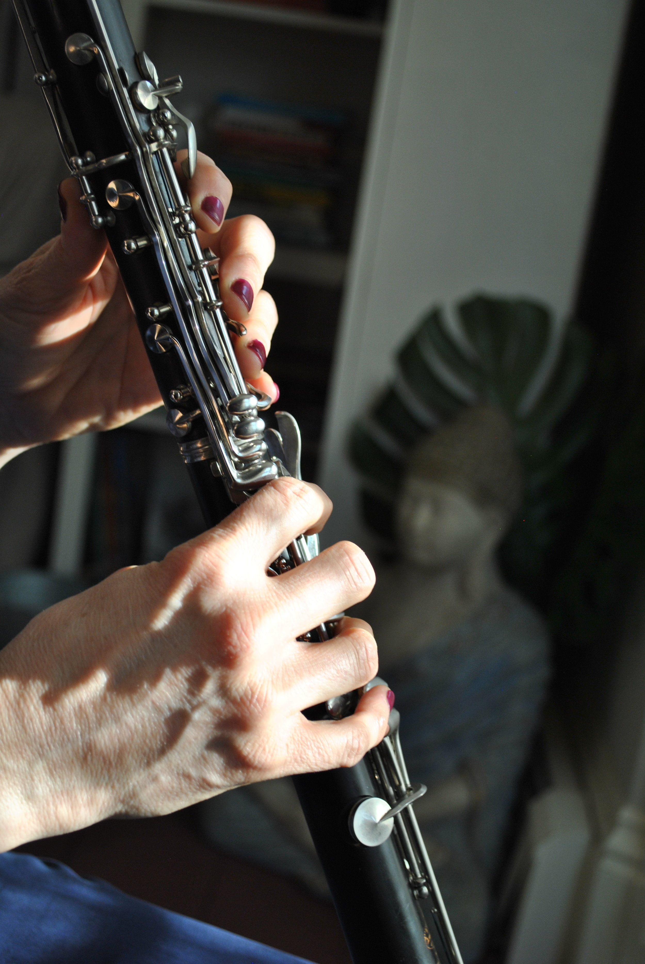 clarinet fingers