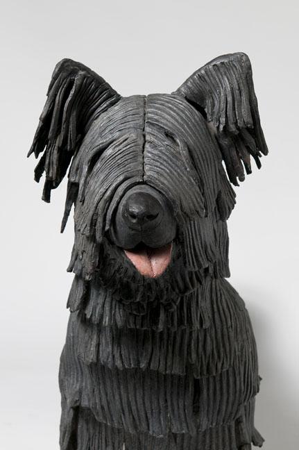 Sunny (Skye Terrier)