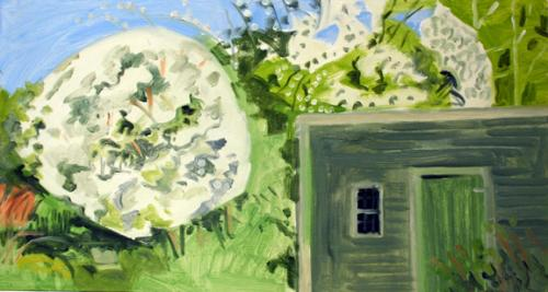Apple Blossoms & Chicken House