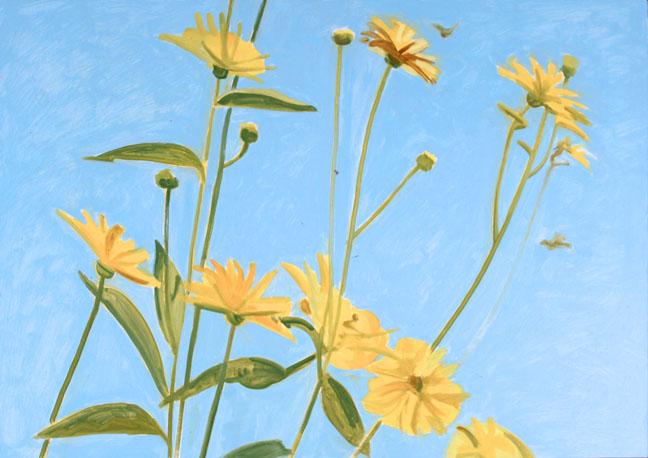 Sunflowers & Blue Sky