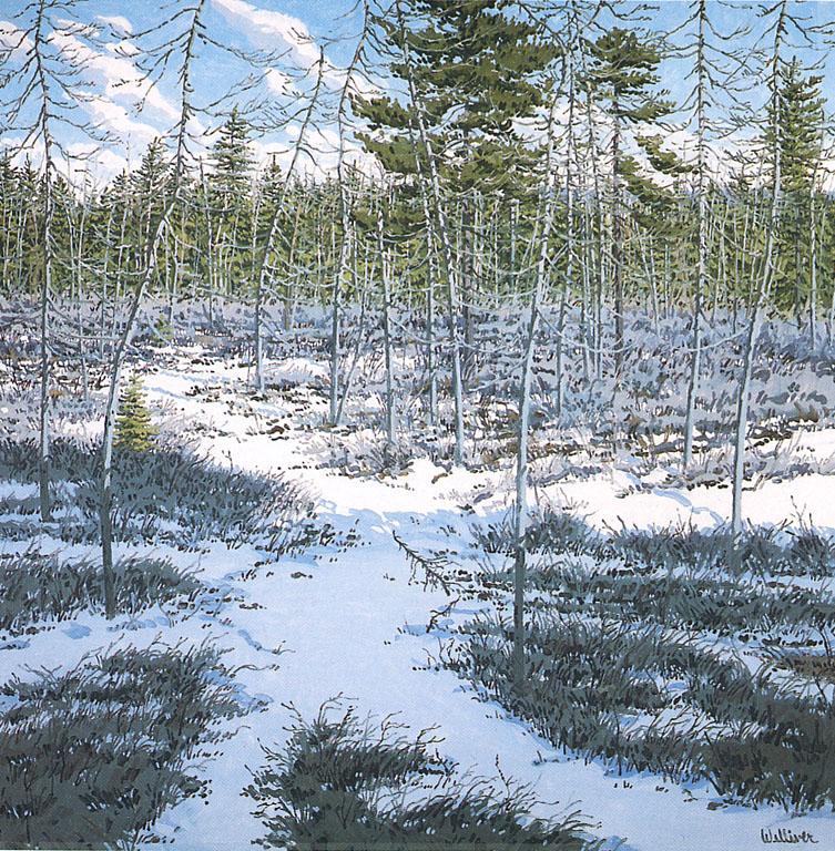 Little Marsh -- Last Snow