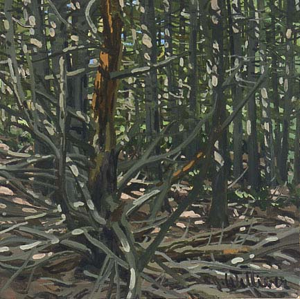 Study for Dead Pine