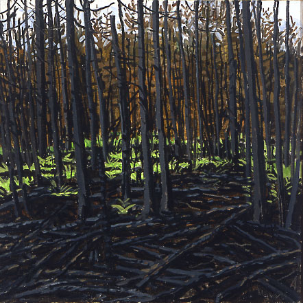 Study for Fire's Edge and Singed Firs