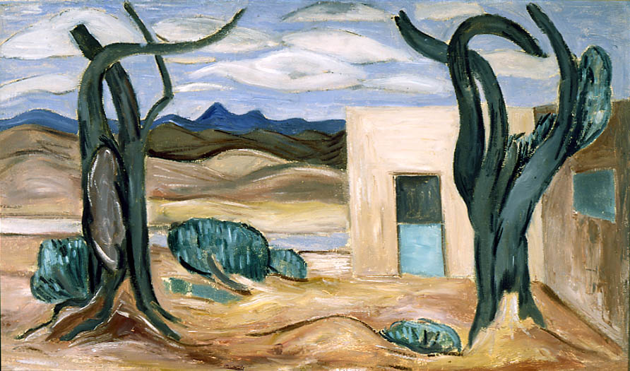 New Mexico Landscape (With House)