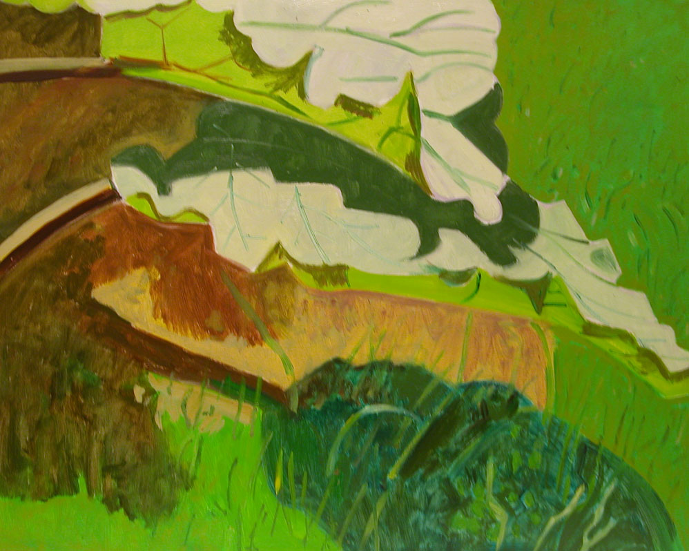LD622_RhubarbLeaves.jpg