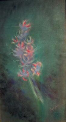 big_LM166_Hyacinth.jpg