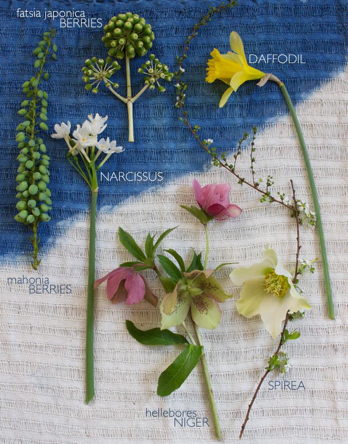 CK-floral-tight1.jpg