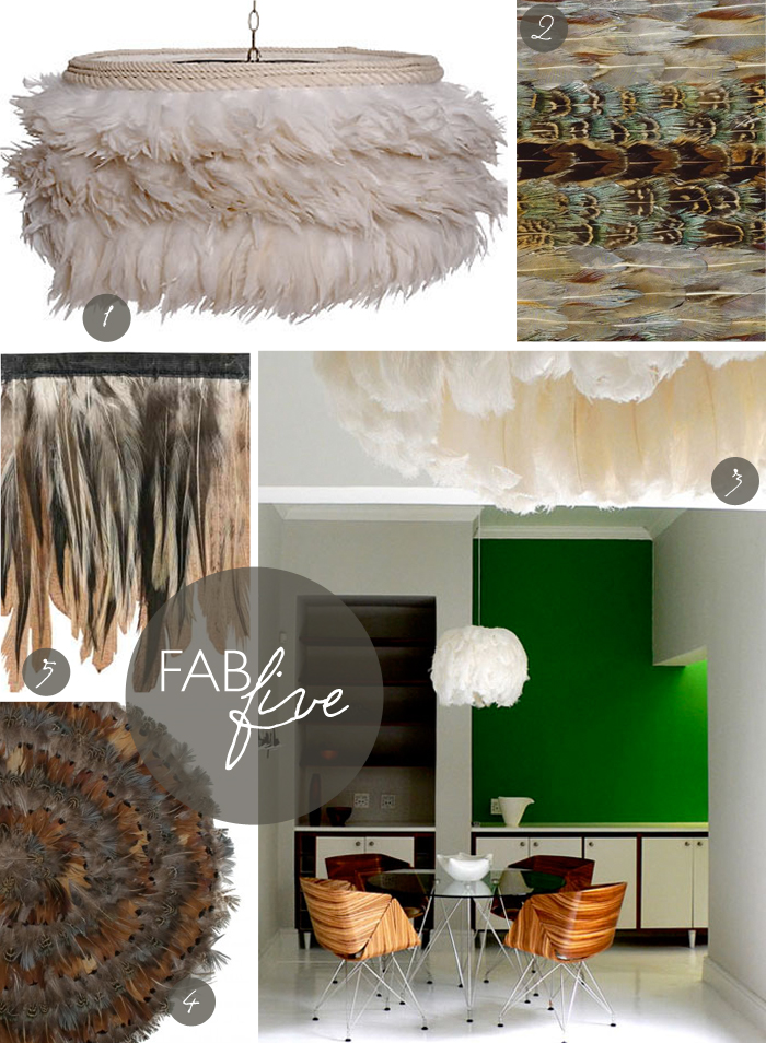 feathers-030713.jpg