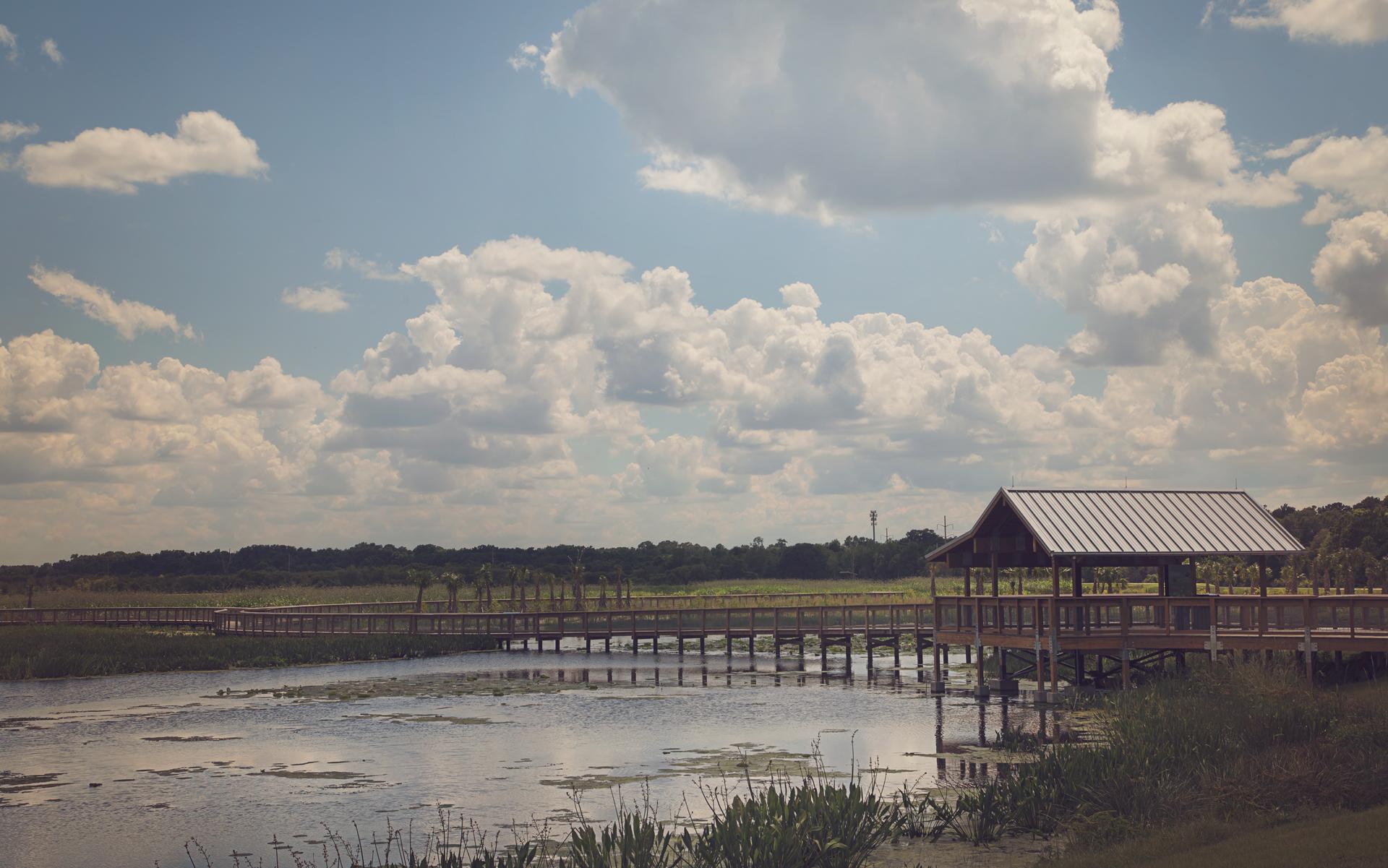 sweetwater-branch-sheet-flow-gainesville-paynes-prairie-patrick-sanders-14.jpg