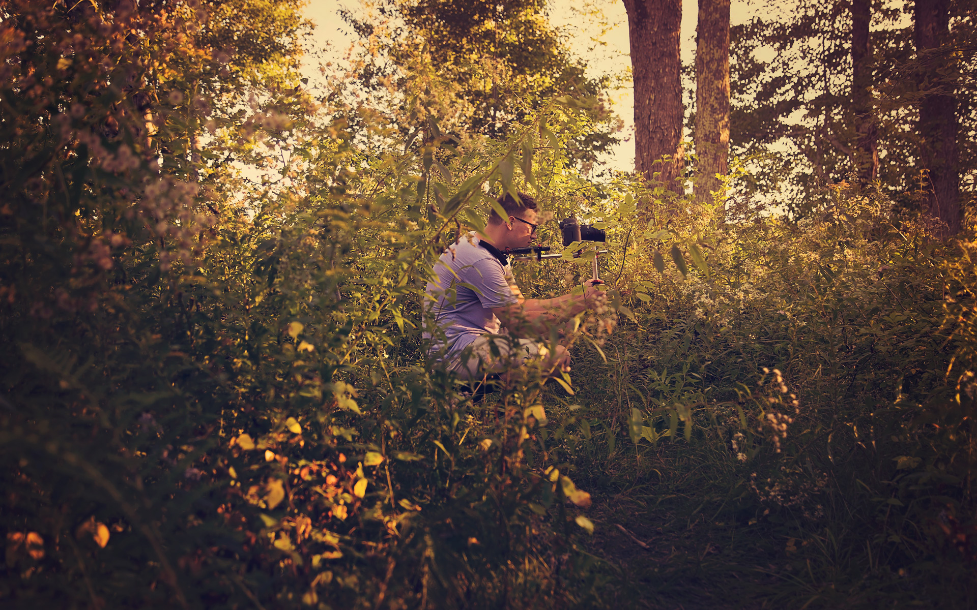 filming-in-the-woods-at-dusk-unity-maine-parisleaf.jpg