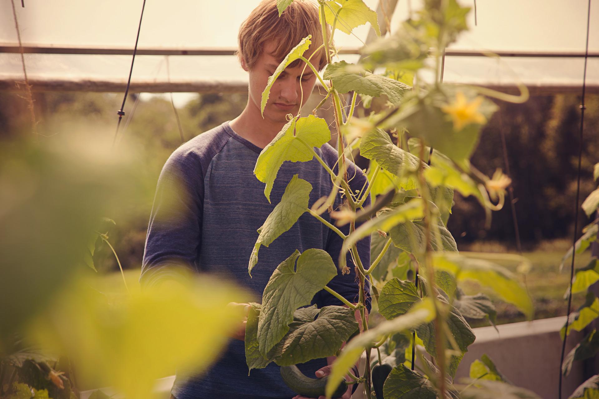 student-in-a-greenhouse-mackay-gardens-unity-parisleaf.jpg