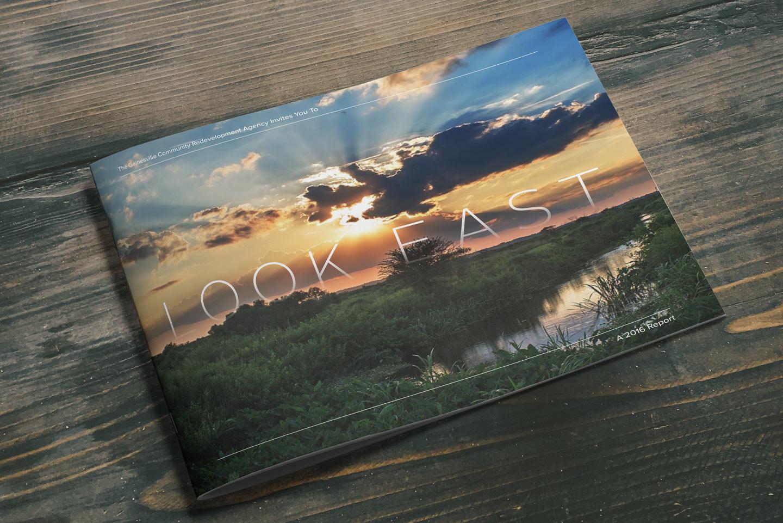 look-east-cover.jpg