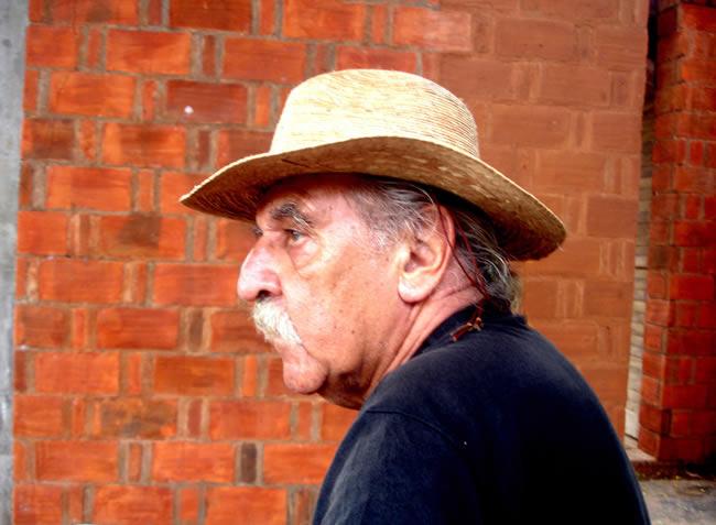 Raimund Abraham (1933 - 2010)