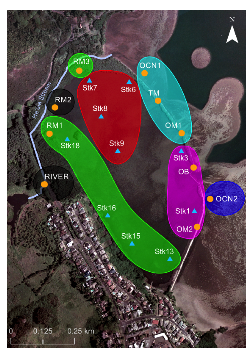 Fig. 1. Spatial distribution of pond areas with similar mean annual salinity, adapted from Young (2011). Black = freshwater, Green = terrigenous-dominated, Red = mid-pond, Cyan = ocean-dominated group-1, Magenta = ocean-dominated group-2, Blue = ocean. See Young (2011) for further description of methods and discussion