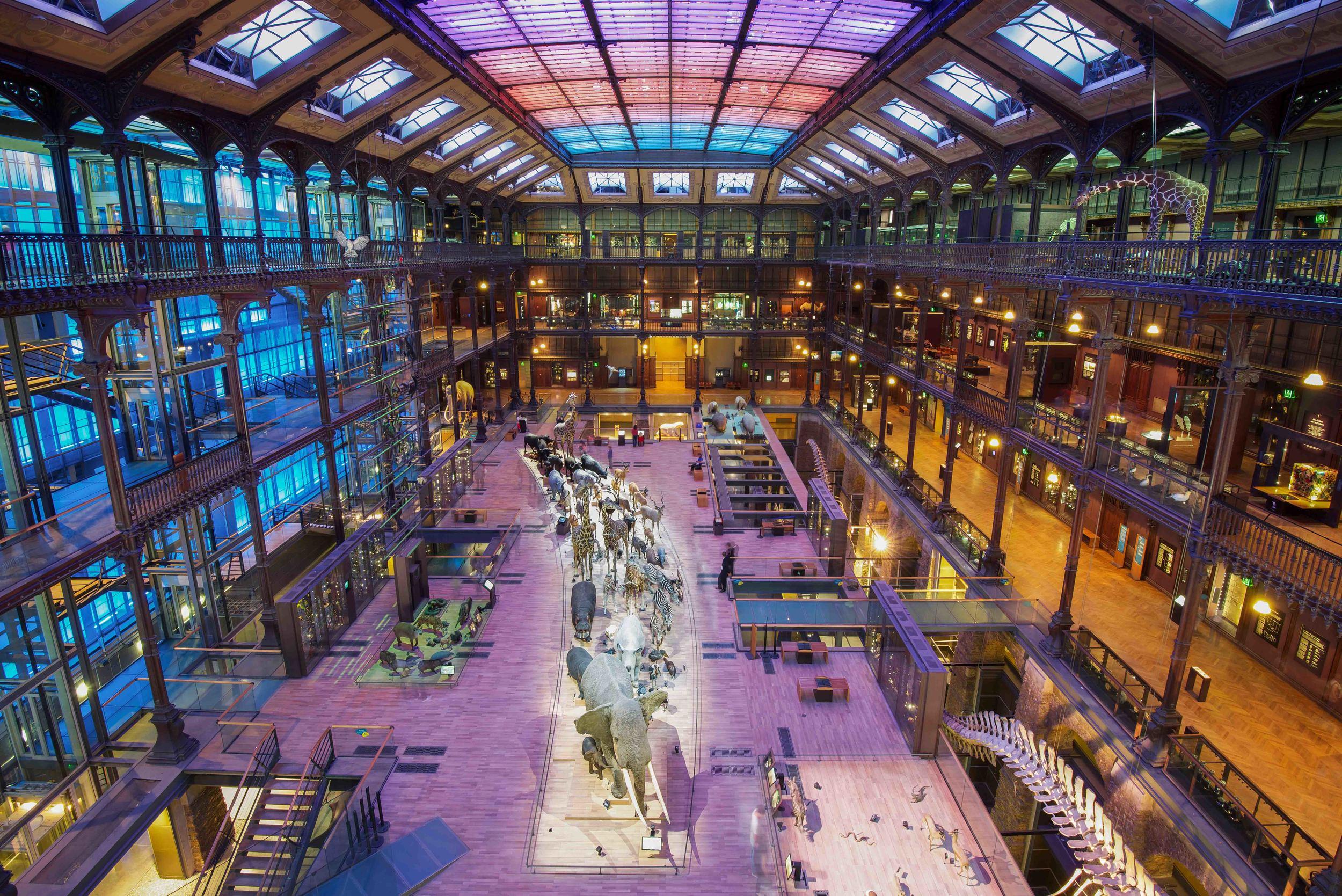 Muséum National d'Histoire Naturelle | Paris, France