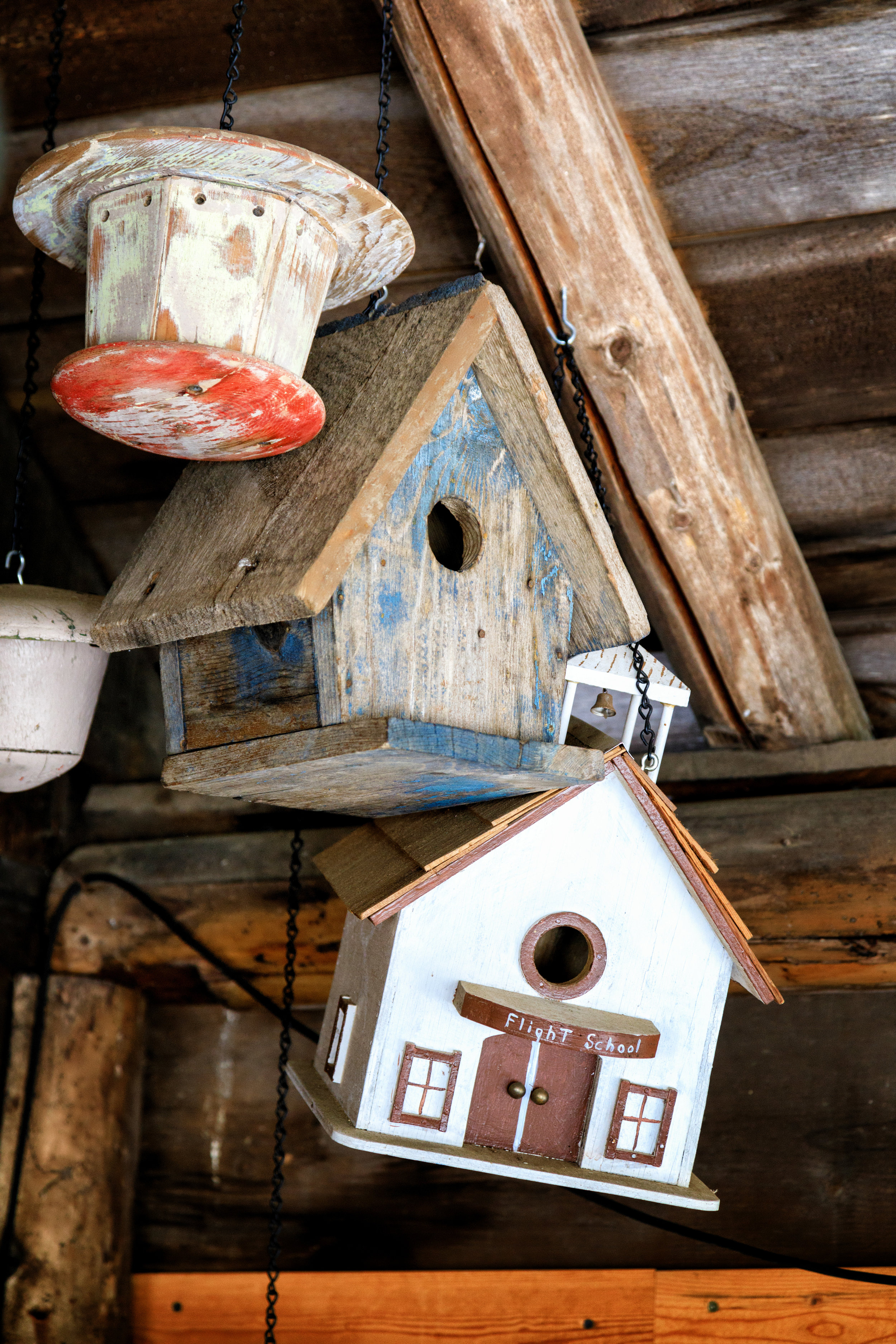 The family has been building birdhouses for some time.