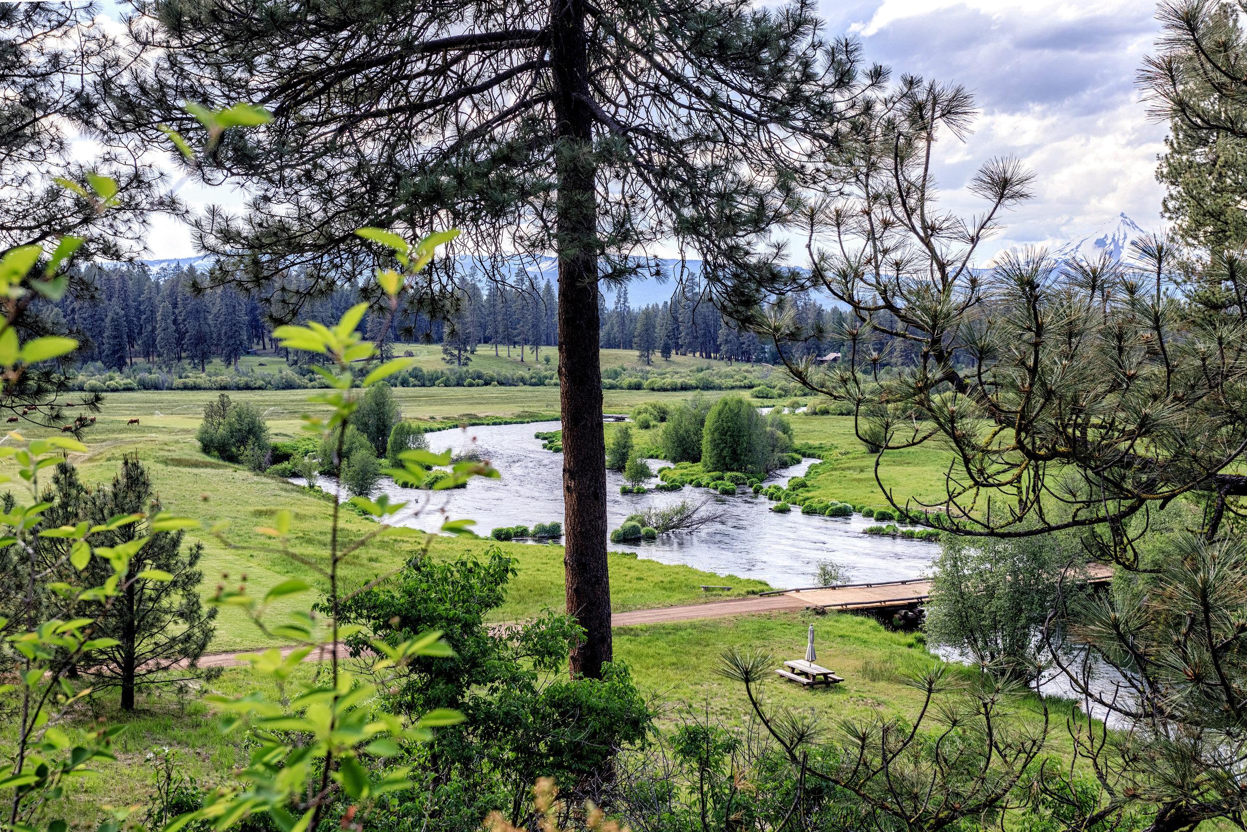 Eleanor Meadow View Nord1614.jpg
