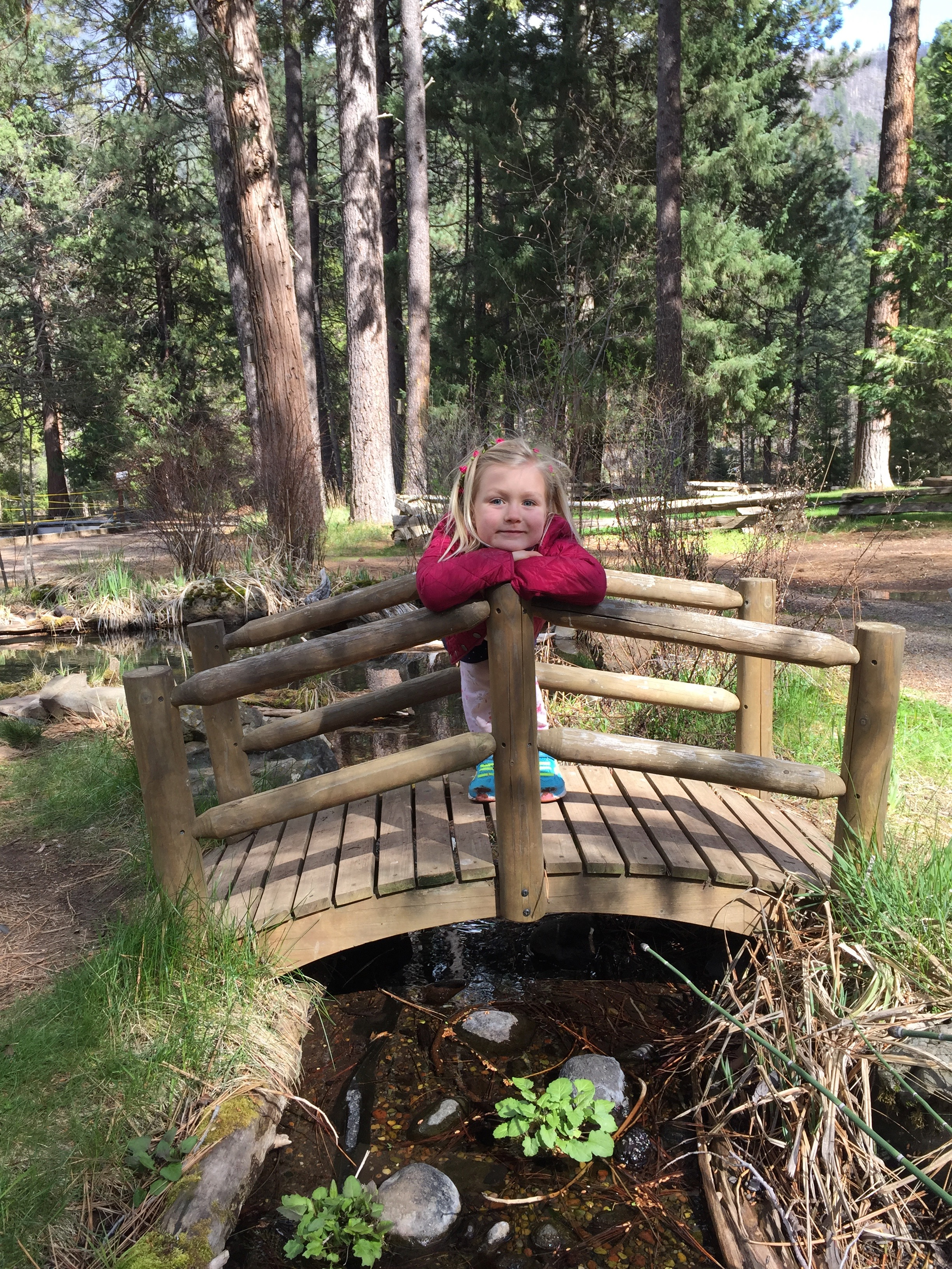 Walk or drive down river to the Wizard Falls fish hatchery, where you can feed enormous trout and observe schools of thousands of fingerlings (baby trout). A great day-hike or short drive from House on Metolius.