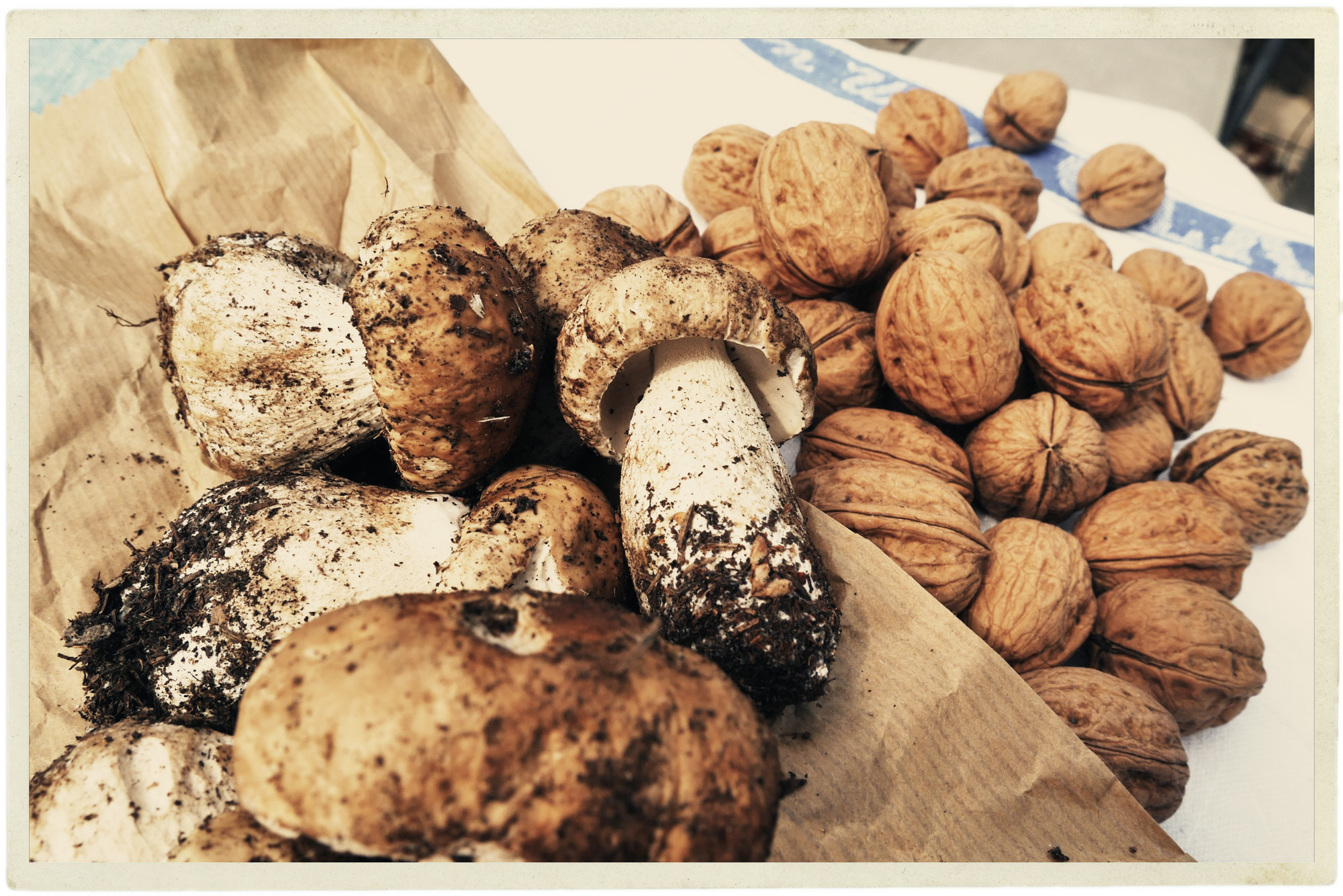 Autumn in Provence means walnuts and cèpes.