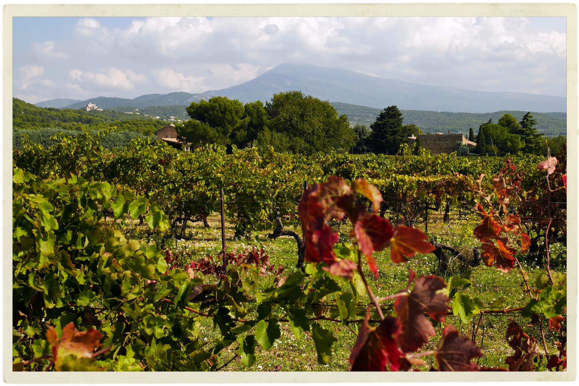 The view of Le Barroux and Ventoux from my last ride in Provence.