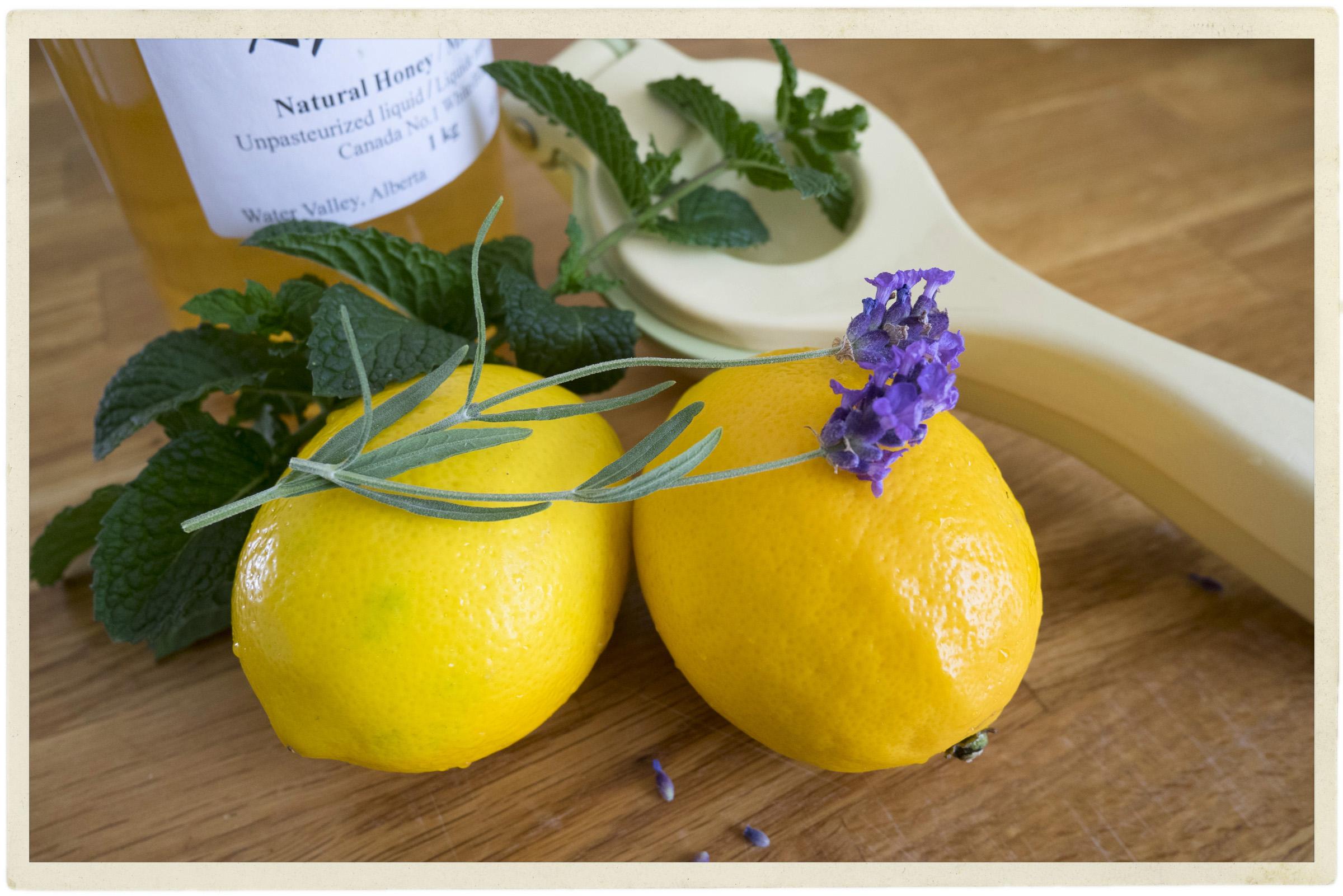 Ingredients for lavender mint lemonade.