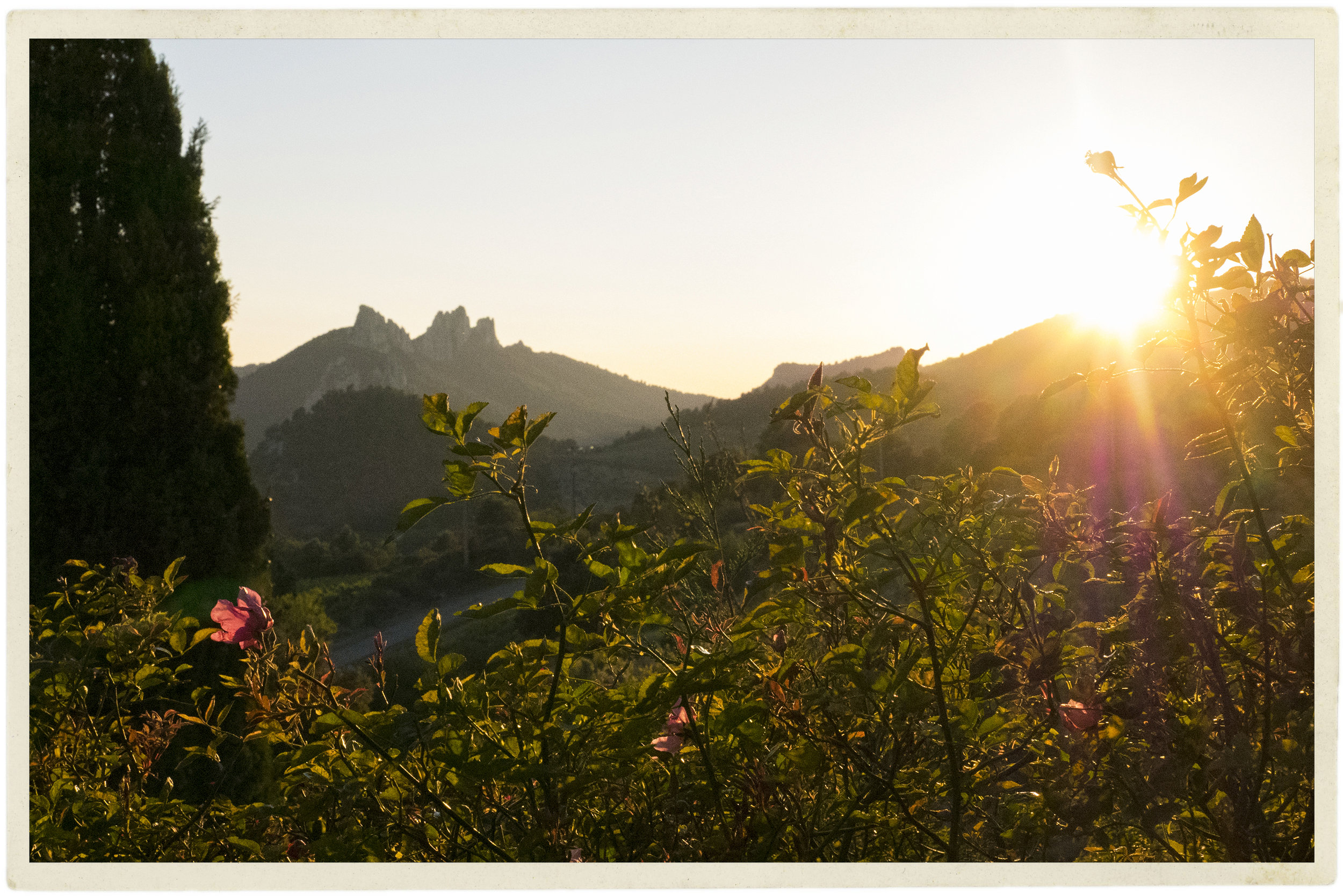 Dentelles sunset.