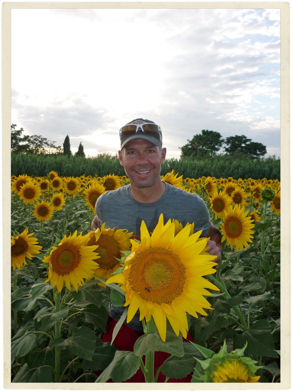 Random sunflower field. Photos required!