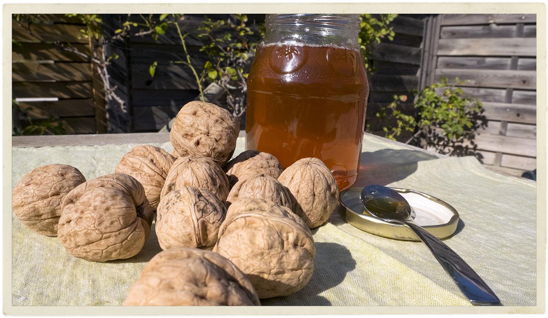 Savoie walnuts and homemade honey.