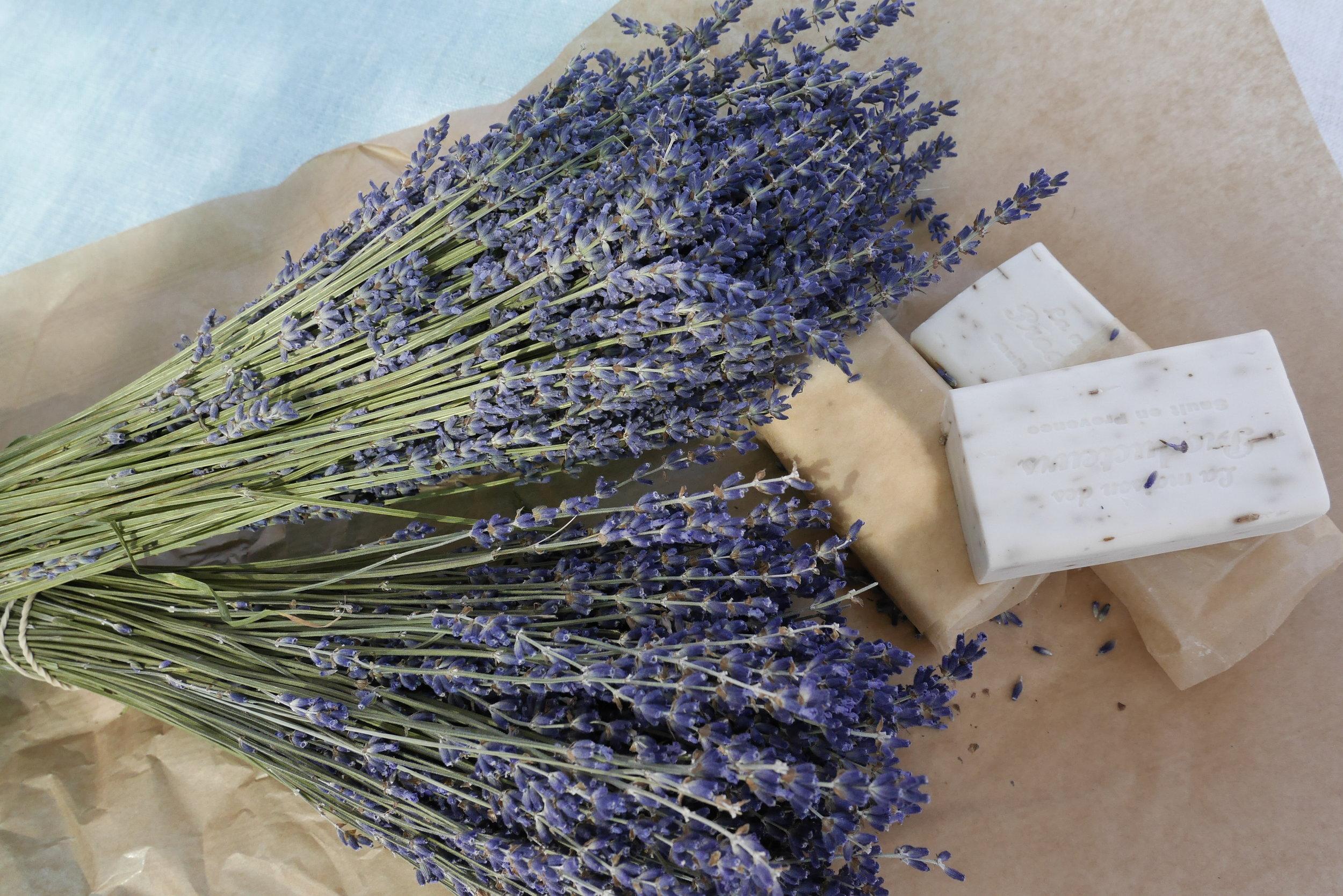 Sault lavender, a piece of heaven.