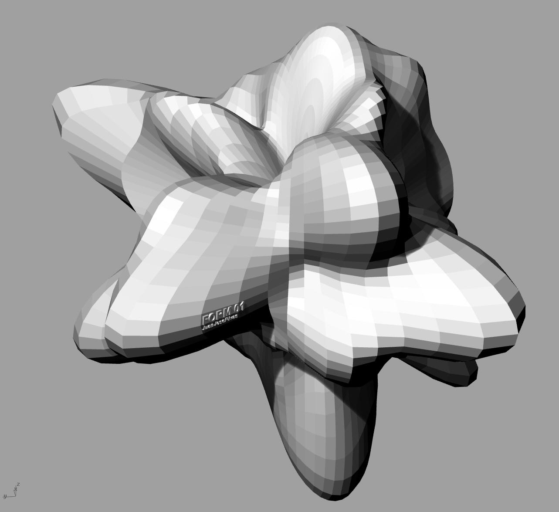 FORM 02.jpg