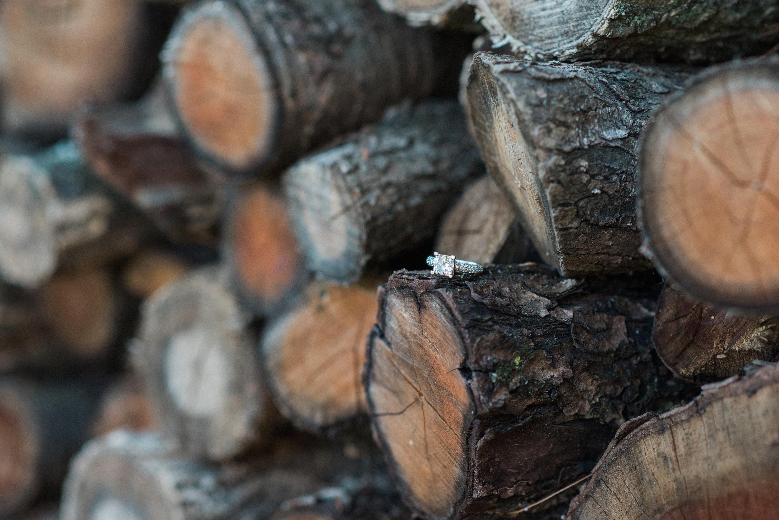 Birch-15.jpg