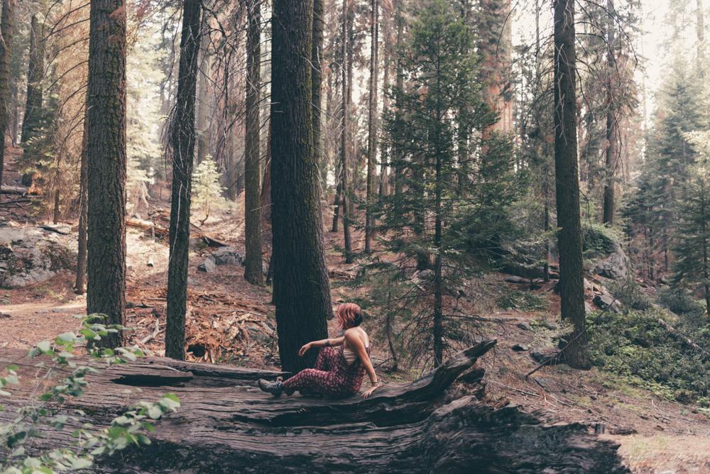 Debra Alison Yosemite Adventurous Elopement-563.jpg
