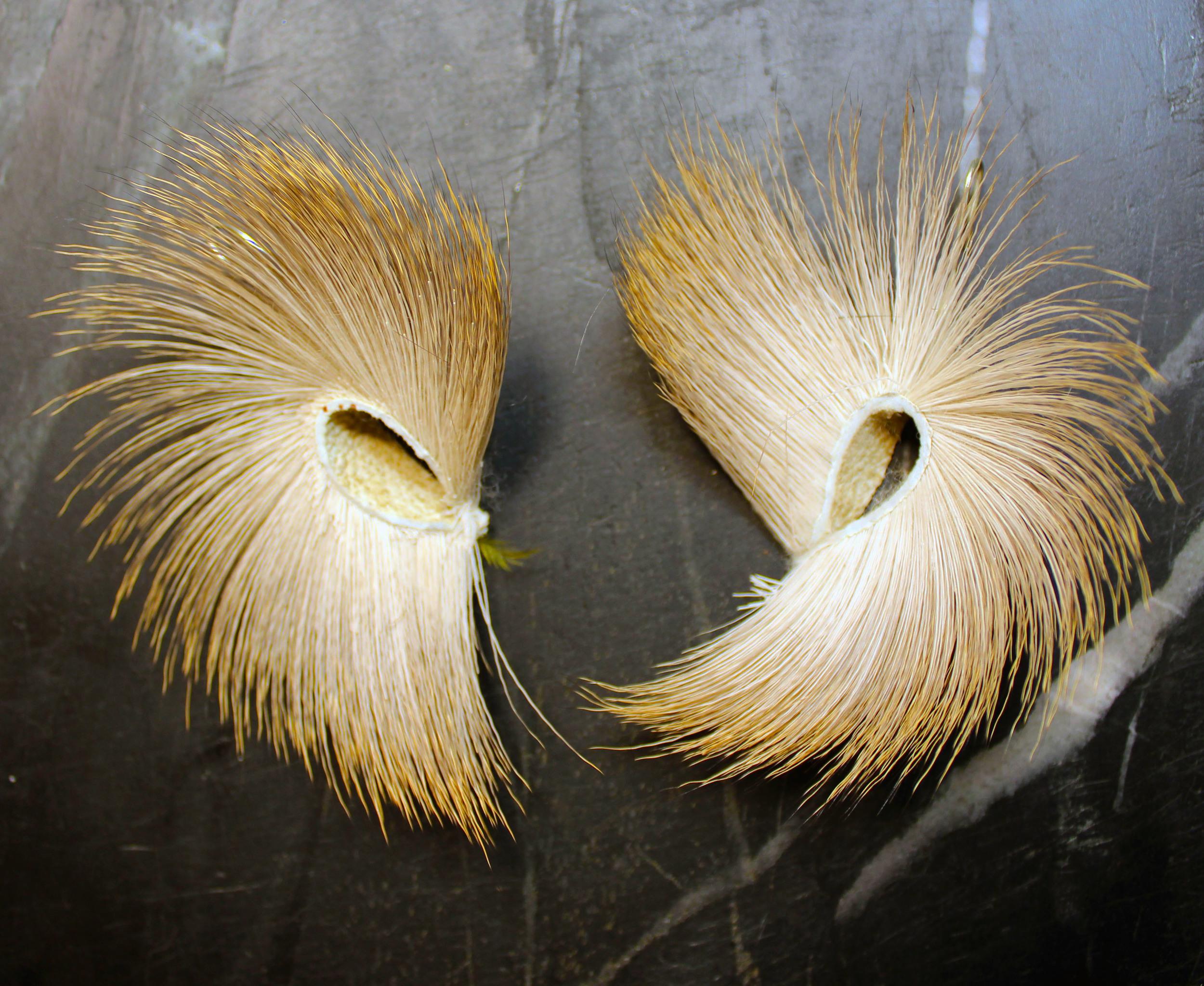 Antelope Hair