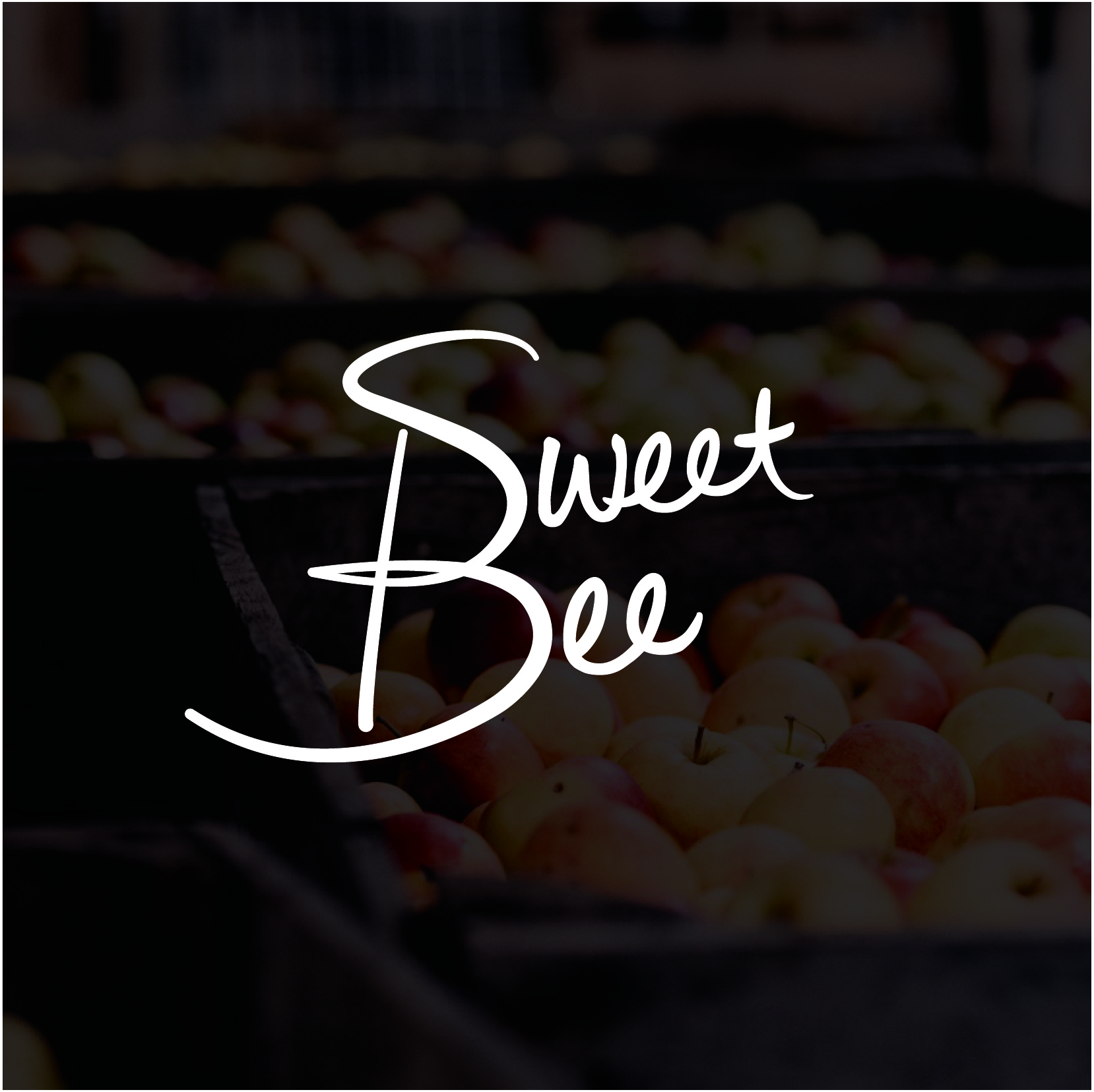 sweet bee2.jpg