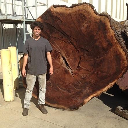 furniture / claro log