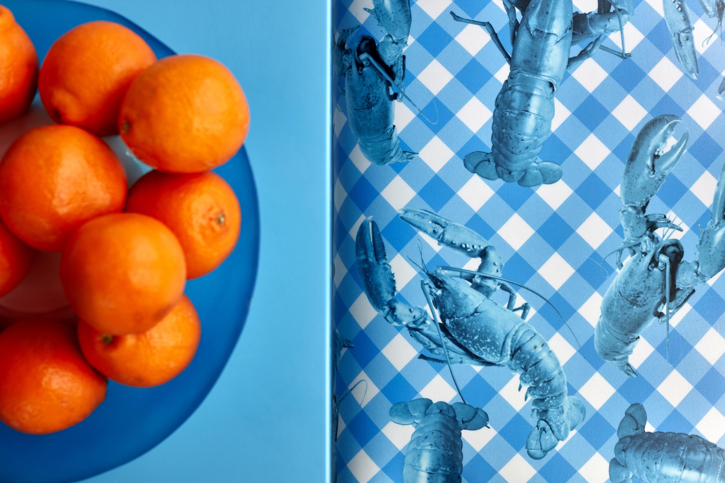 © ghislaine vinas interior design_montauk_kitchen_detail.jpg