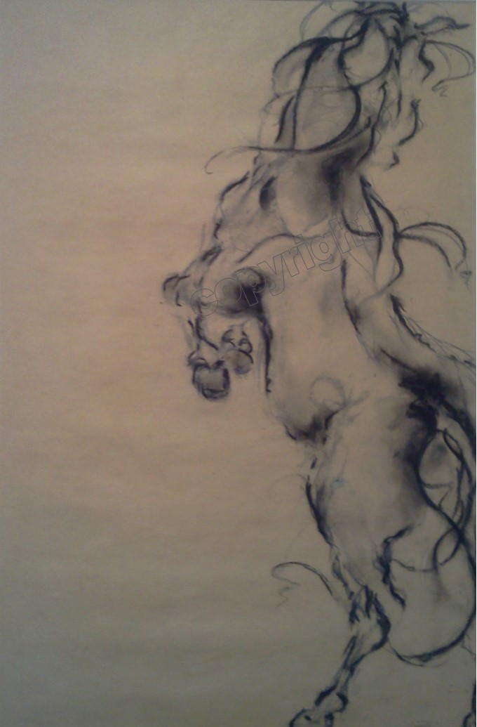 Rearing Horse #22