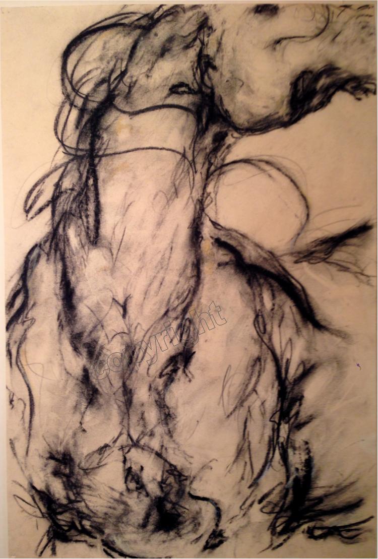 Horse Study #12