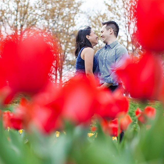 Another fantastic engagement session in the books! Blooming Centennial Park was a fantastic backdrop for James and Brie. See you both in May for the wedding :)