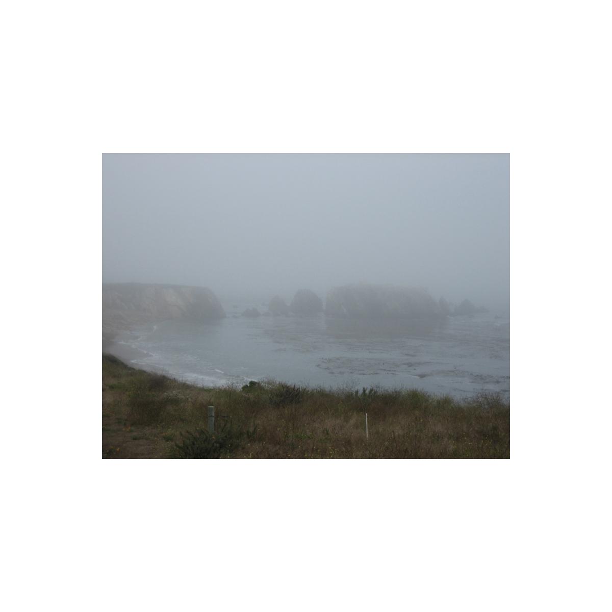 Foggy walk in Los Osos