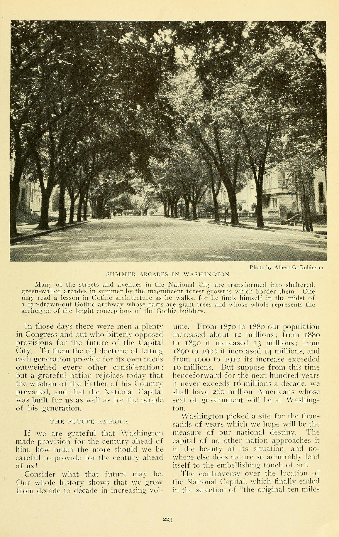 Trees in Washington, DC in 1915