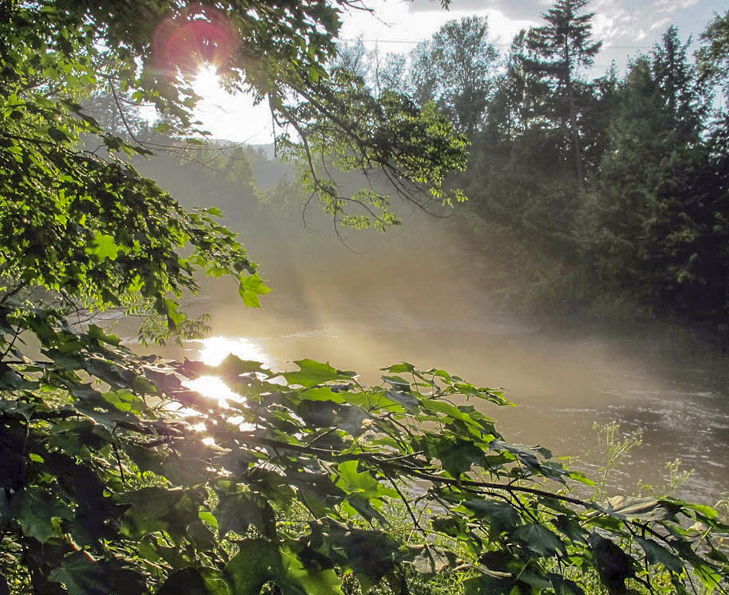 31-Lipke -- mist off the river 1.jpg