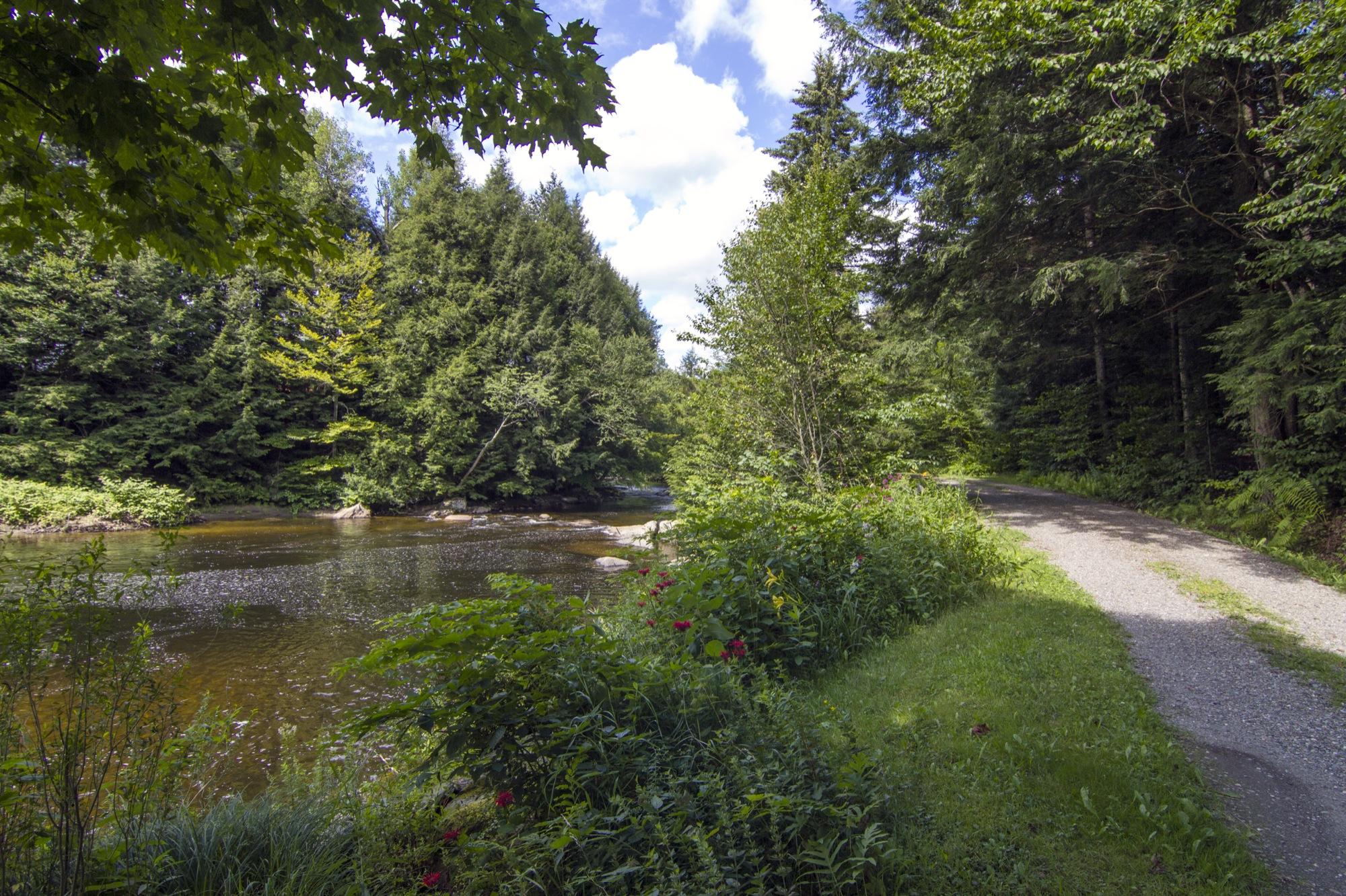 36-IMG_0554 Lipke Driveway along the River.jpg